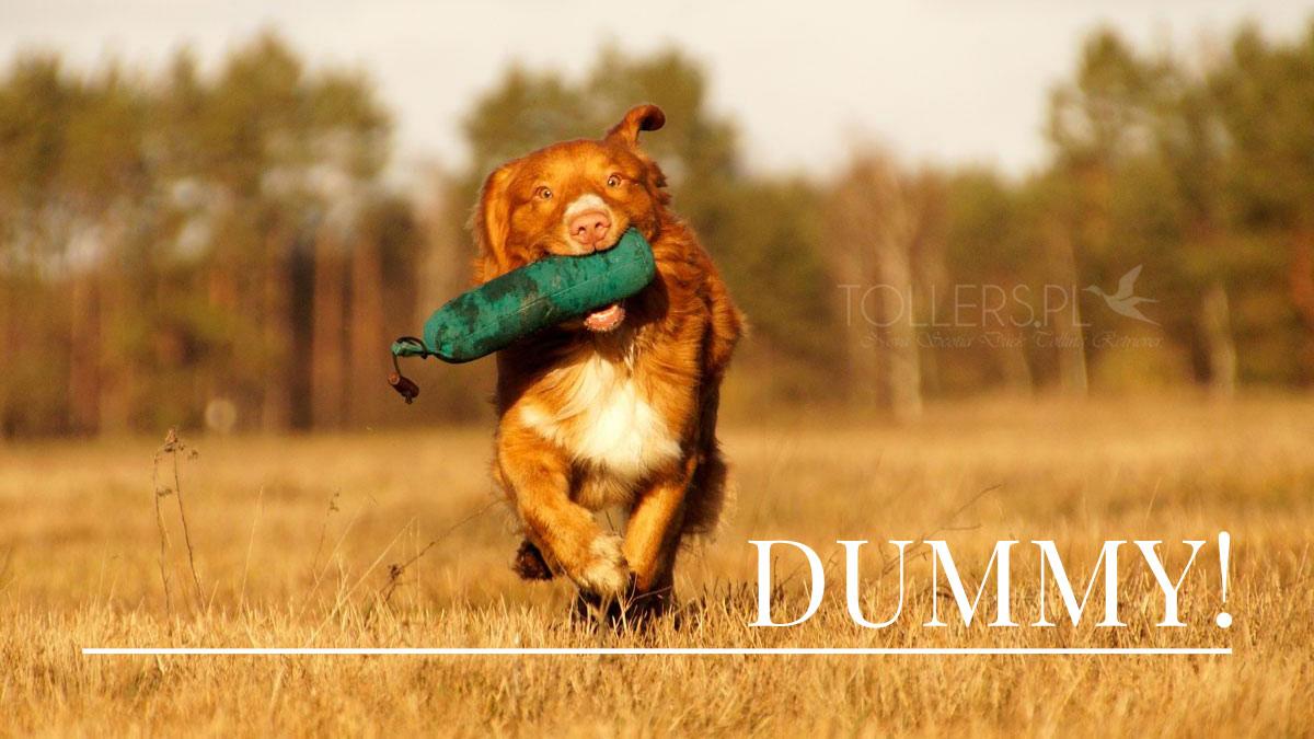 trening-dummy