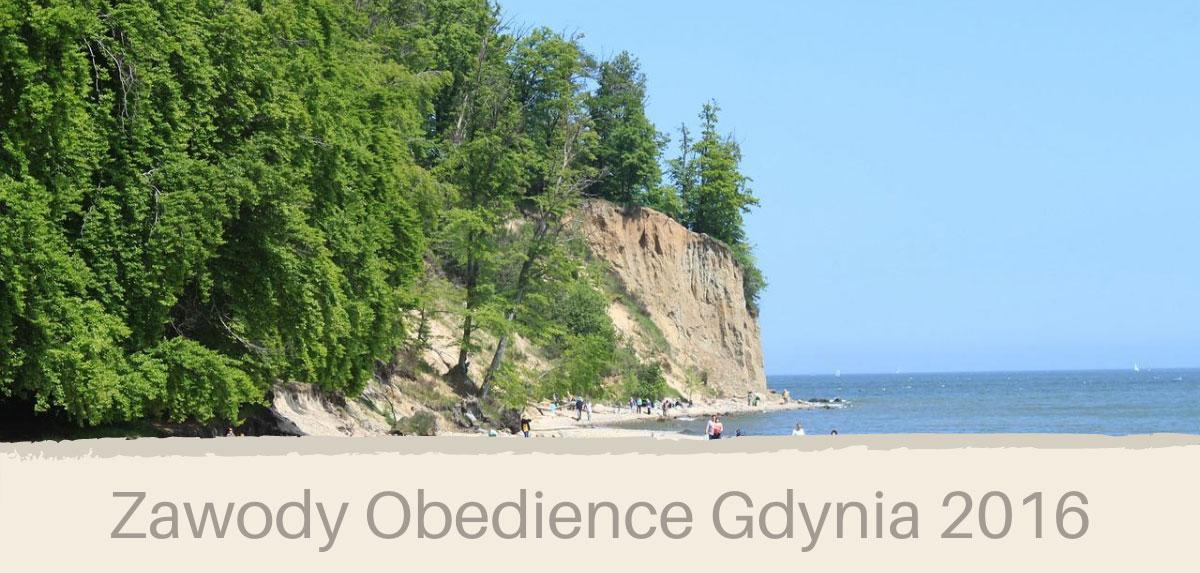Zawody obedience w Gdyni 2016