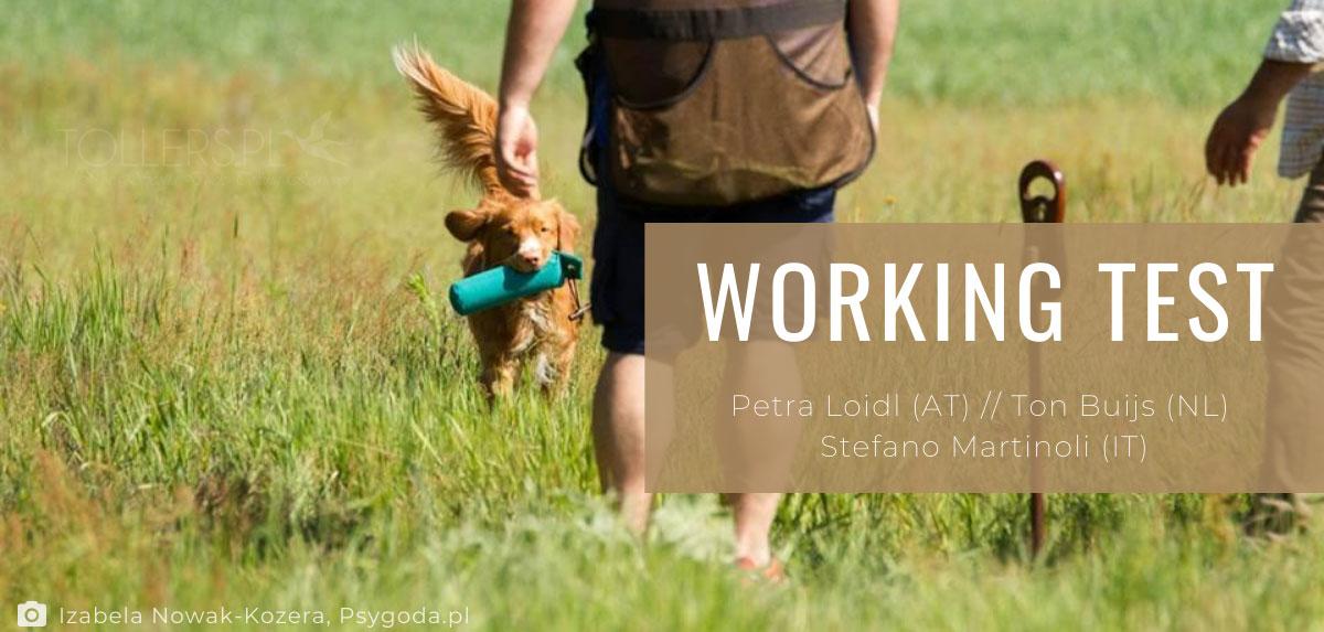 Relacja z Working Testów (Toller)
