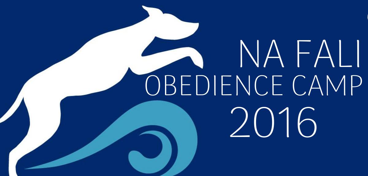 Obóz obedience Na Fali Obedience Camp 2016