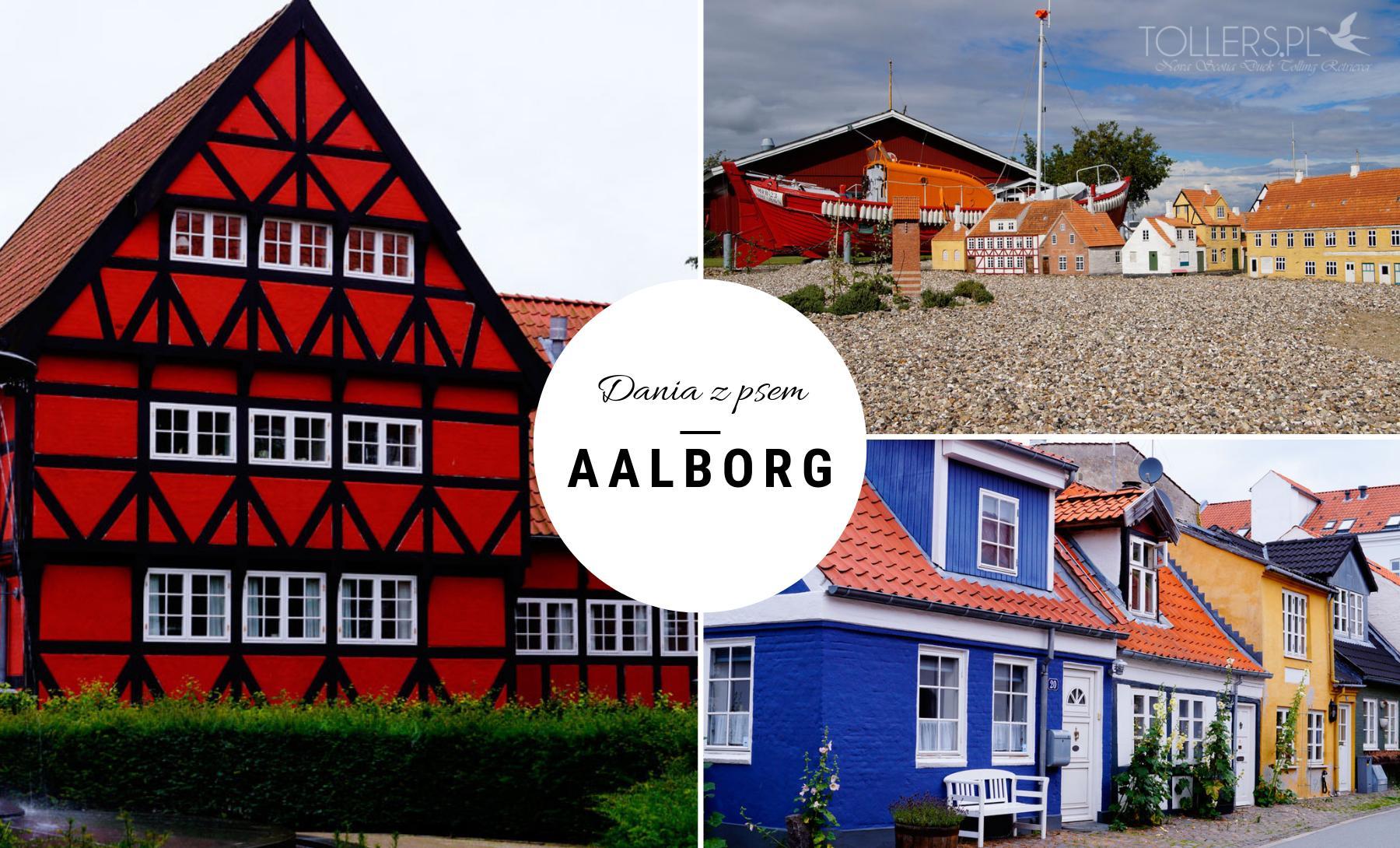Zwiedzanie Aalborg - Dania z psem