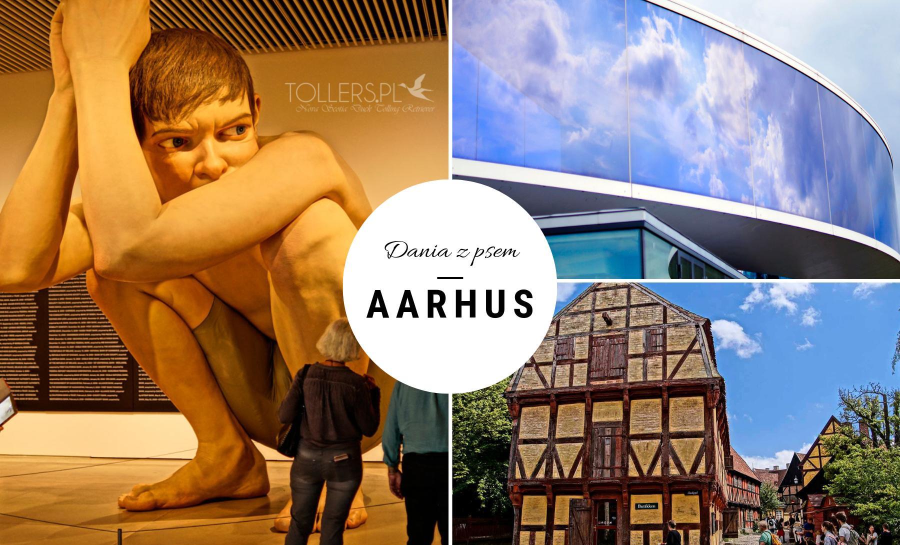 Zwiedzania Aarhus - Dania z psem