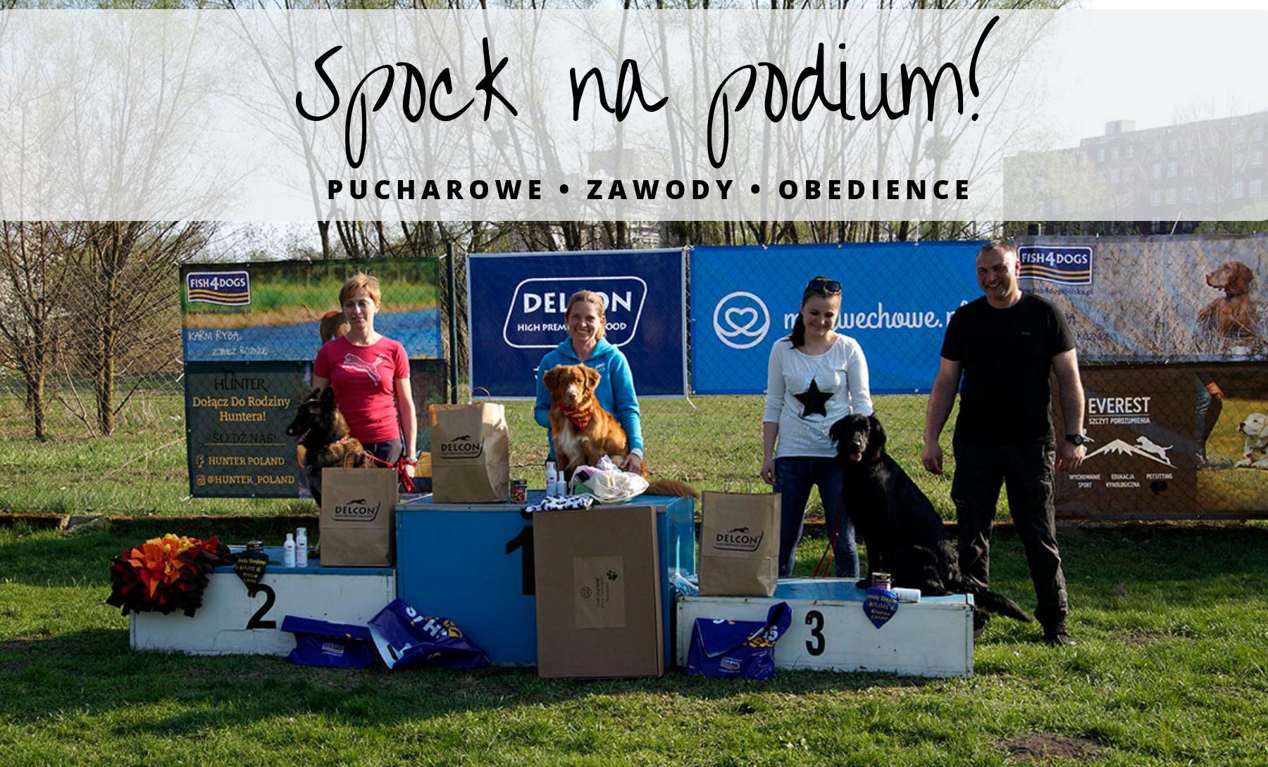 Zawody obedience we Wrocławiu 2017