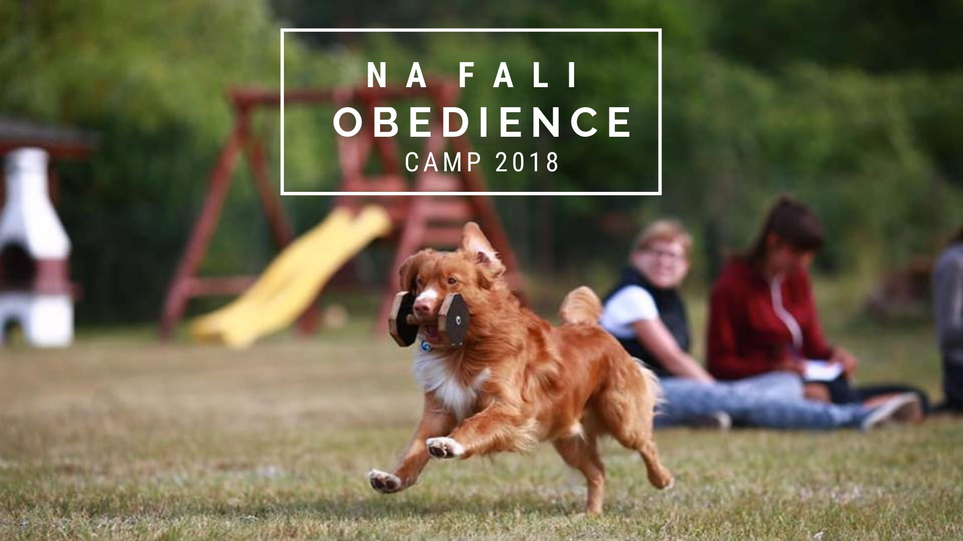 Joanna Hewelt Obedience Camp
