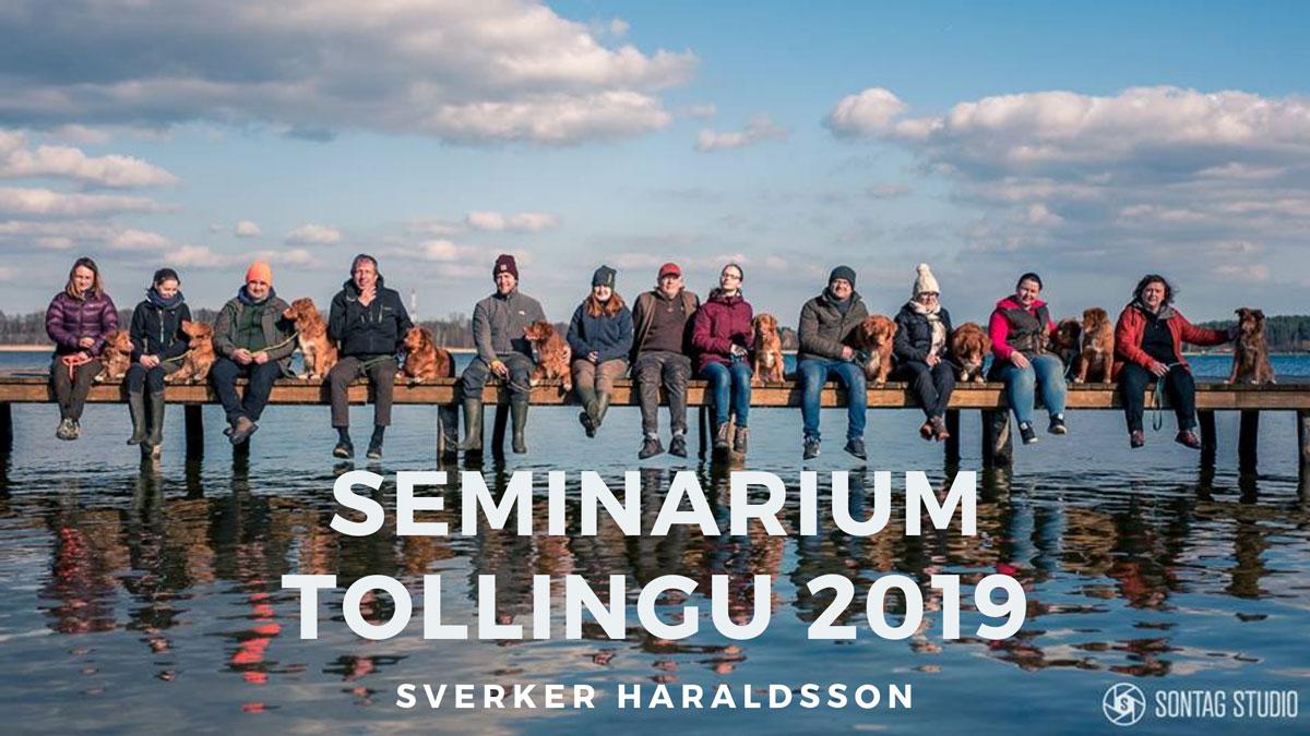 Seminarium tollingu dla Nova Scotia Duck Tolling Retriever