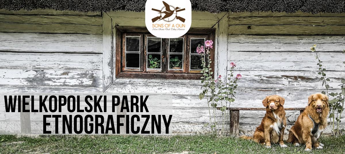 Zwiedzanie z psem Wielkopolskiego Parku Etnograficznego